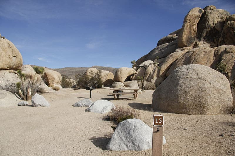 belle campground in joshua tree