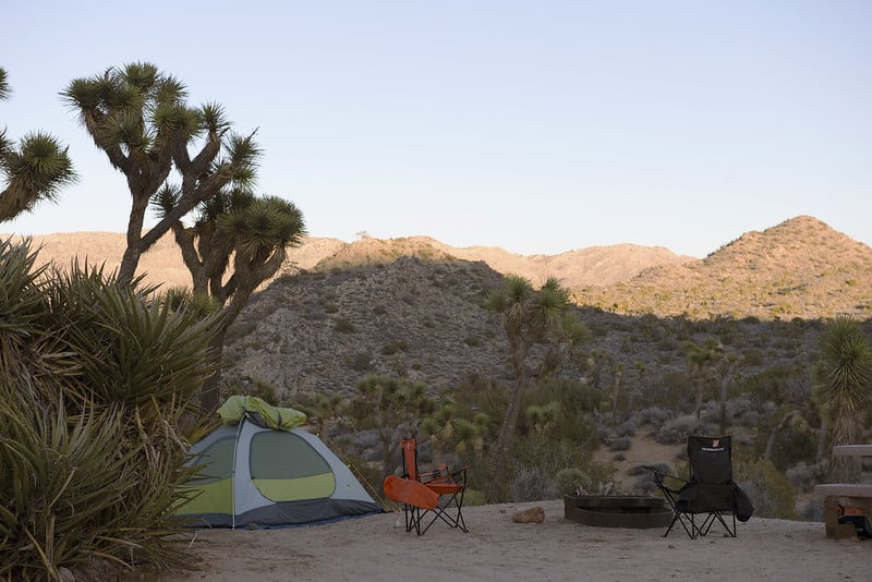 Black Rock Campground in Joshua Tree