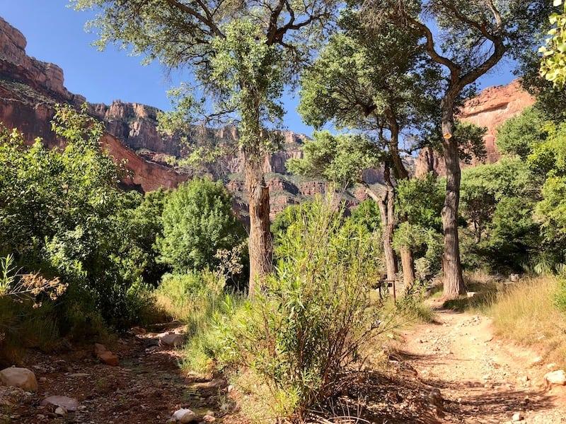 USA Hiking Bucket List - Indian Garden Campground, Grand Canyon Rim to Rim Hike